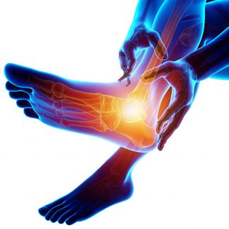 Foot and Ankle Disorders: A Massage Therapist's Treatment Guide